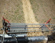 A combine using an agricultural belt to harvest